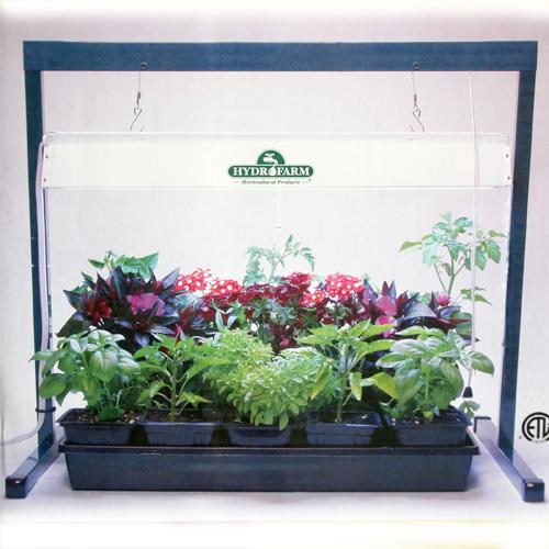 Hydroponics Indoor Growing